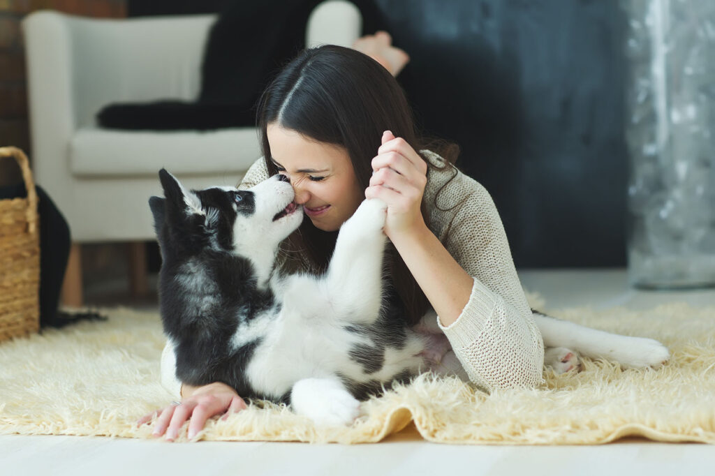 playing with dog on carpet